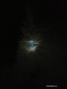 This is the inverted photo.  If you left  click to enlarge it, you'll see a unicorn grinning at you.  Just some clouds, the moon and your Auntie Carroll wishing upon a star.