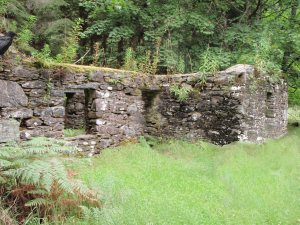 deserted stone cottage in the woods, Scotland