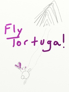 fly tortuga!