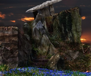 steps with sunset and bluebells
