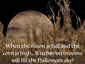 Moon and Corn and Halloween sky