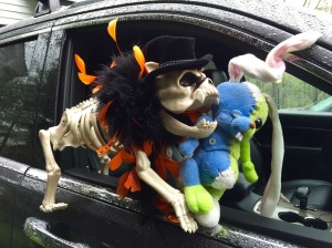 Sparky & Wabbit---Sunday Drive