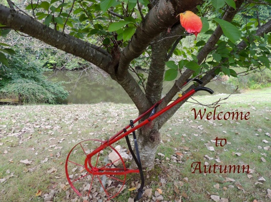 welcome-to-fall-modified